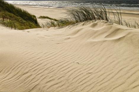 Ripples en Dunes